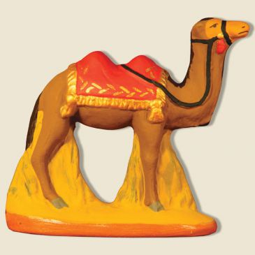 Camel with red blanket