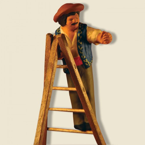 image: Olive picker on step-ladder