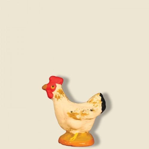 image: Poule blanche