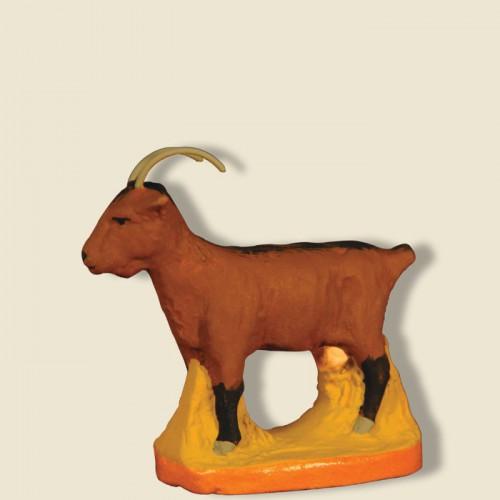 image: Chèvre marron
