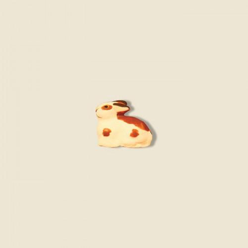 image: Lapin bicolore