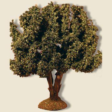 Olive Tree 15 cm