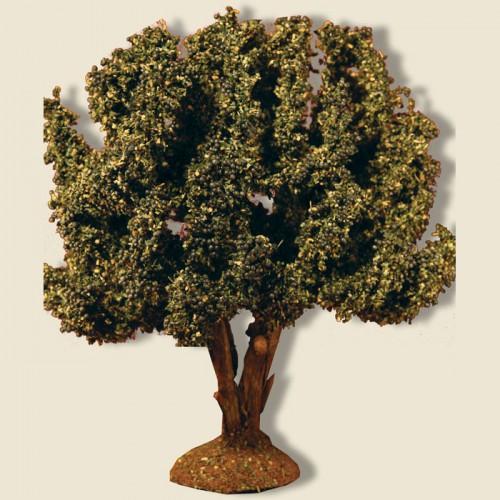 image: Olive Tree 15 cm