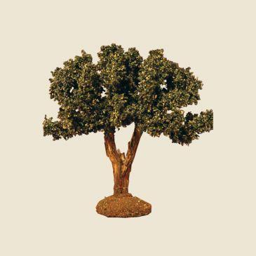 image: Olive Tree 12 cm