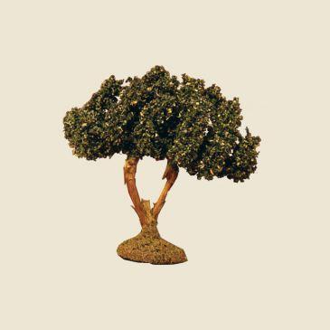 Olive Tree 9 cm