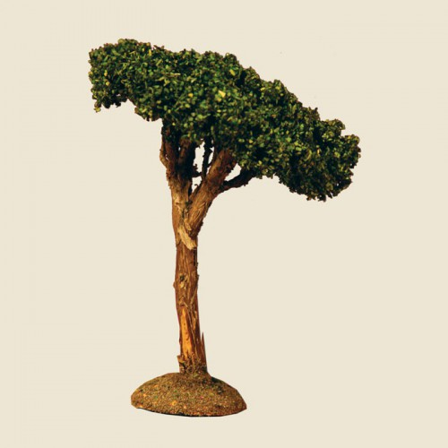image: Pine Tree 14 cm