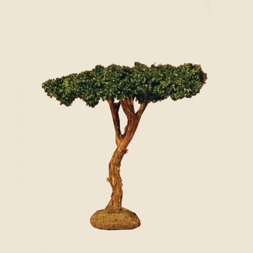 image: Pine Tree 11 cm