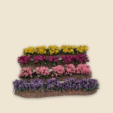 Rangées de fleurs couleurs variées