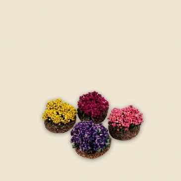 Flower bushes - 4 colours