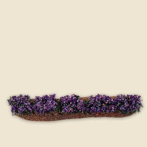 Rangée de fleurs couleur lavande