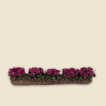 Rangée de fleurs fushia