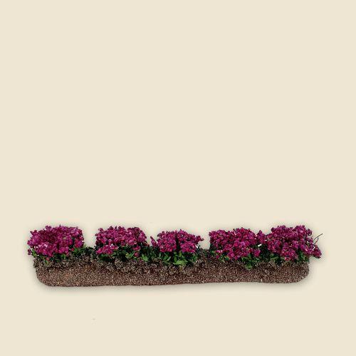 Rangée de fleurs couleur fushia