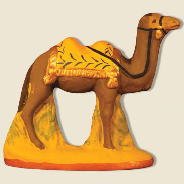 Camel standing yellow blanket