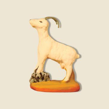 Goat standing on a bolder