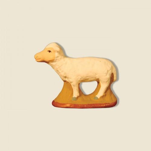 image: Standing sheep
