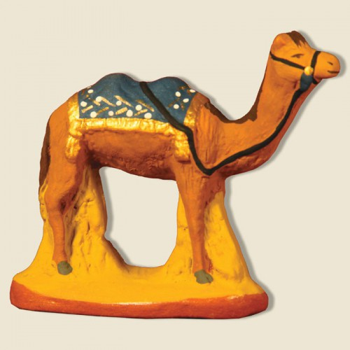 image: Camel with bleue blanket