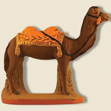 Camel with yellow blanket