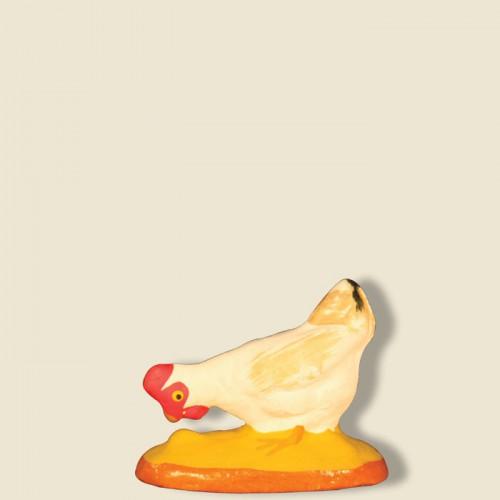 image: Poule blanche qui picore